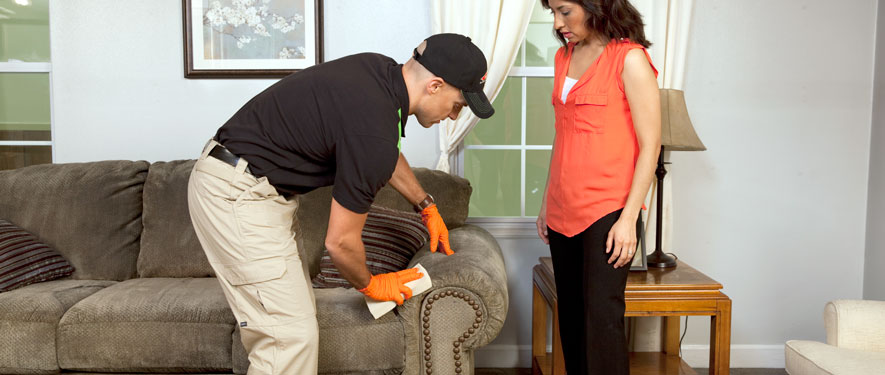 Madison, IN carpet upholstery cleaning